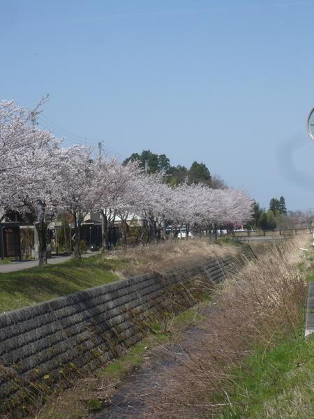 f:id:yukiwarisou_0222:20210402112850j:plain