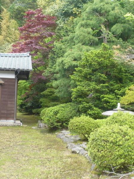 f:id:yukiwarisou_0222:20210509141300j:plain