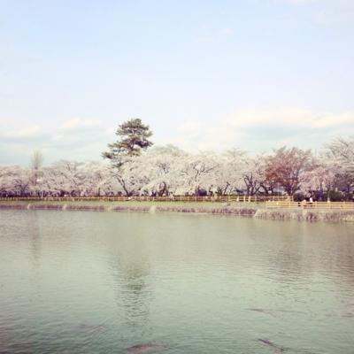 f:id:yukix03:20140406001157j:image