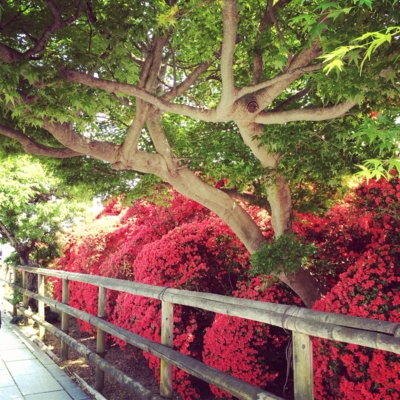 f:id:yukix03:20140427191520j:image