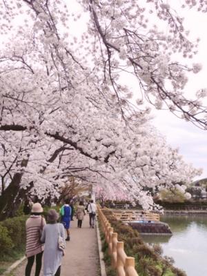 f:id:yukix03:20150404150134j:image