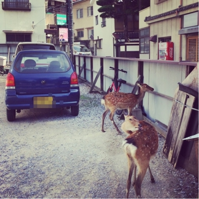 f:id:yukix03:20150922143635j:image