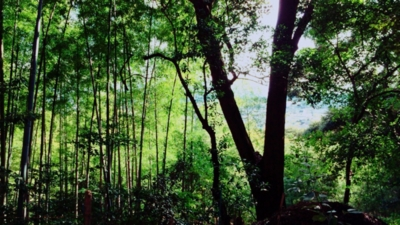 f:id:yukix03:20160110142006j:image