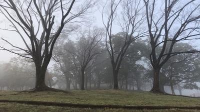 f:id:yukix03:20181222184119j:image