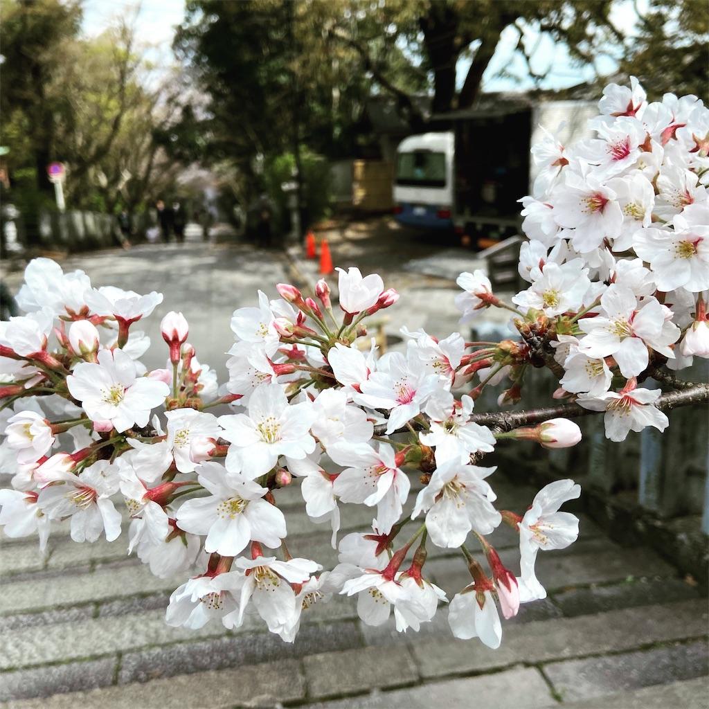 f:id:yukix03:20200329143701j:image