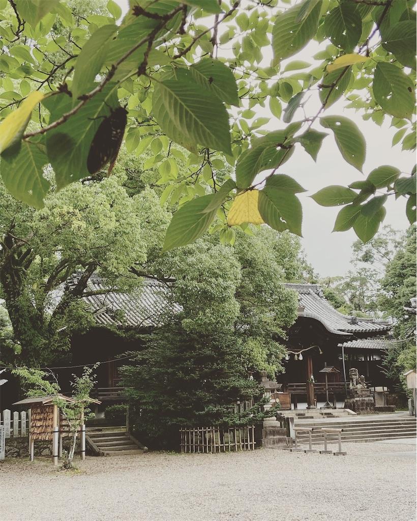 f:id:yukix03:20200728153824j:image