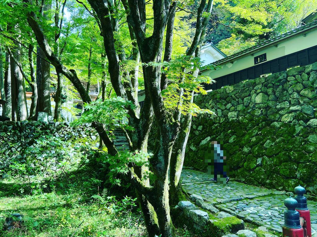f:id:yukix03:20201025152350p:image