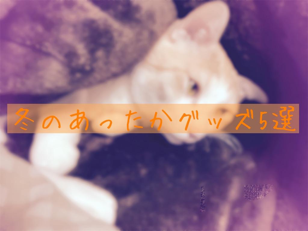 f:id:yukixmuu:20191202224150j:image