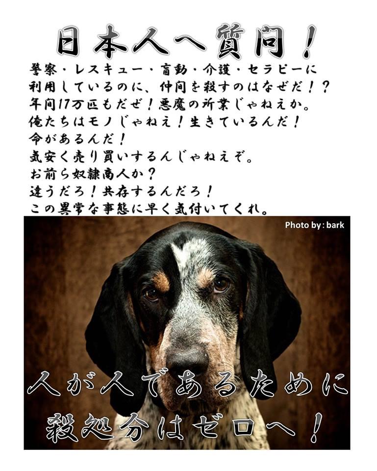 f:id:yukiyamakun:20180917130600j:plain