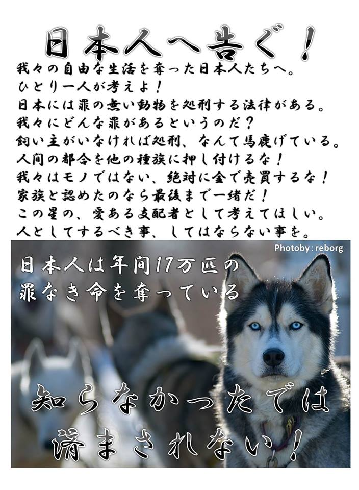 f:id:yukiyamakun:20180917130712j:plain