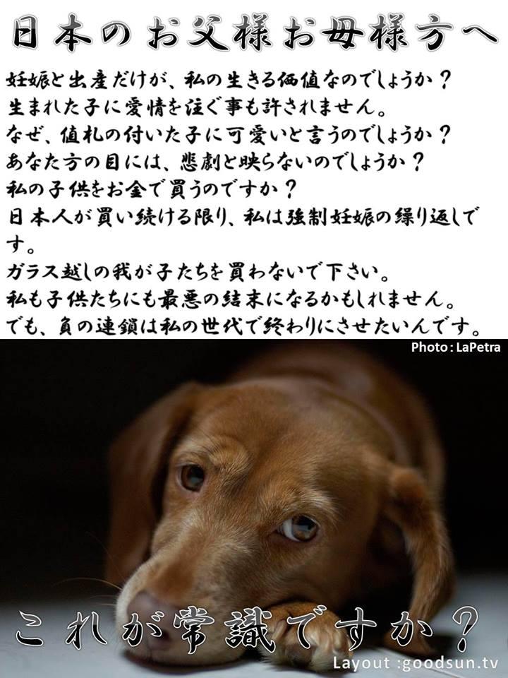 f:id:yukiyamakun:20180917130759j:plain
