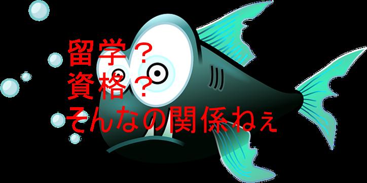 f:id:yukiyukiponsu:20190420222125p:plain
