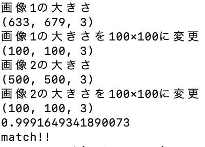 f:id:yukiyukiponsu:20200429002256p:plain