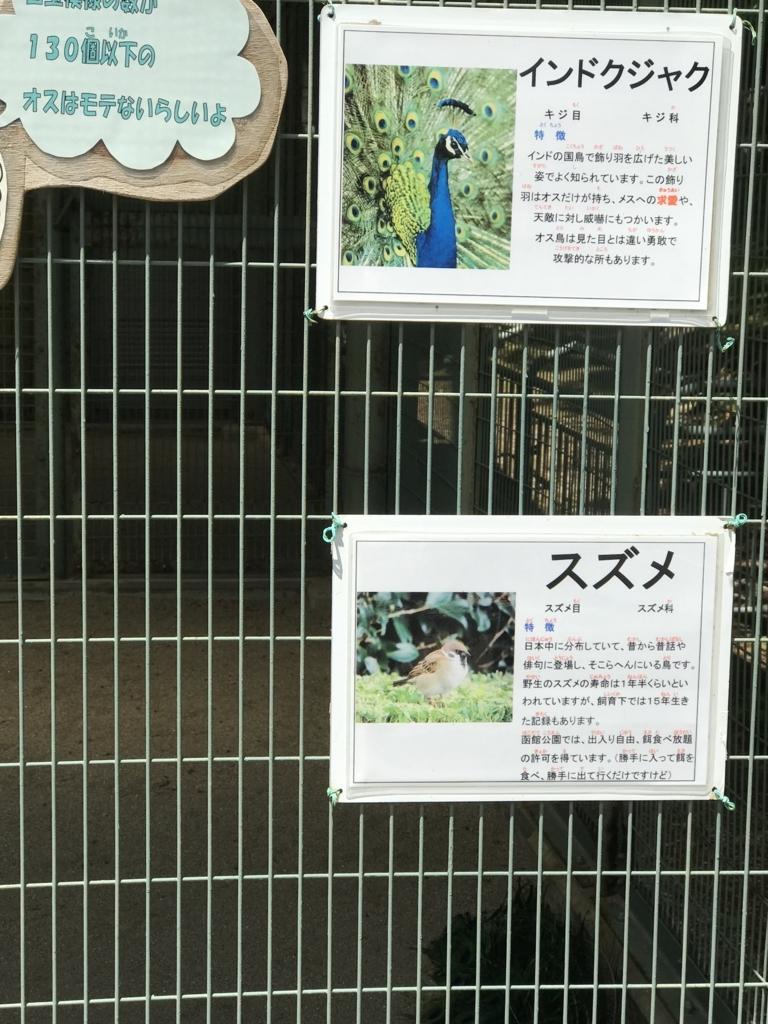 f:id:yukiyukiyuki1203:20180529212020j:plain