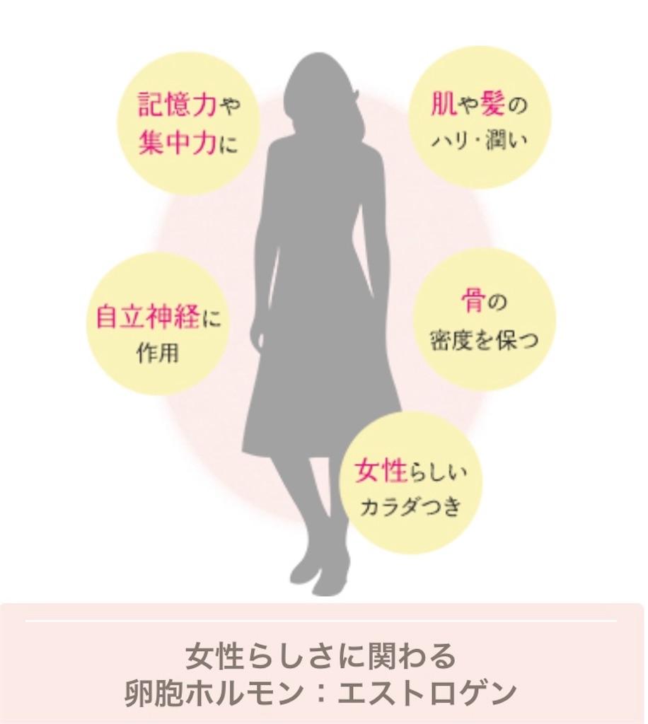 f:id:yukiyukiyuki625:20210310135348j:image