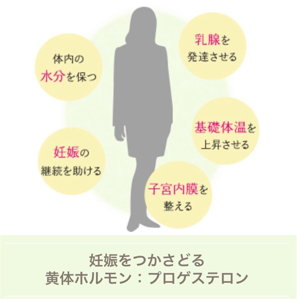 f:id:yukiyukiyuki625:20210310135354j:image