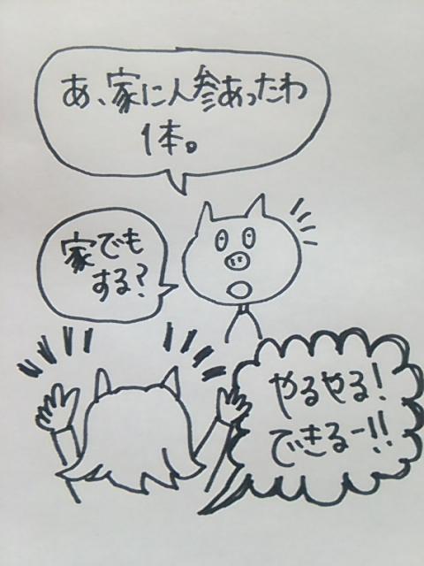 f:id:yukko3340:20170616001417j:plain
