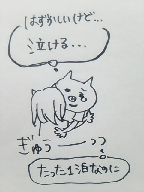 f:id:yukko3340:20170703210653j:plain