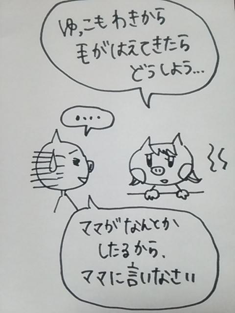 f:id:yukko3340:20170801190915j:plain
