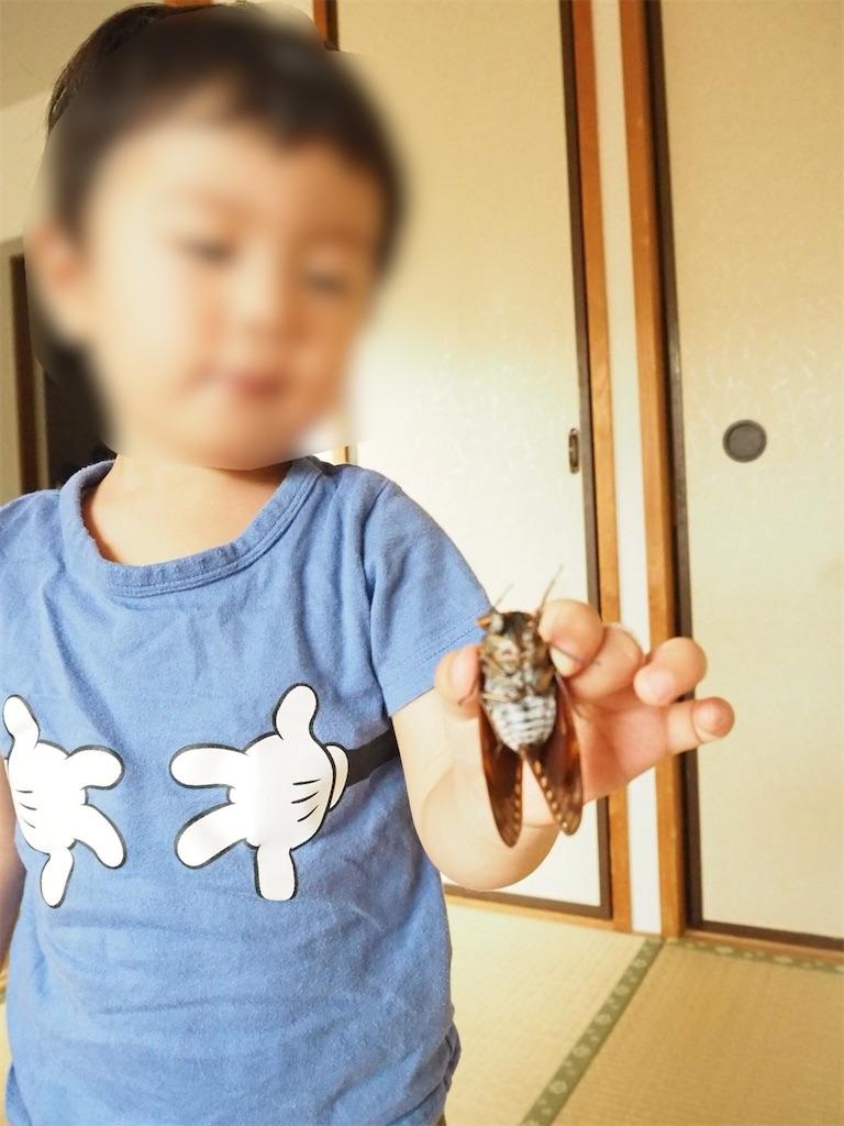 f:id:yukkocamp:20210606125234j:image