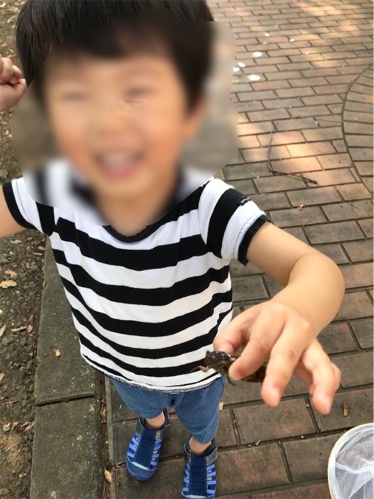 f:id:yukkocamp:20210606125457j:image