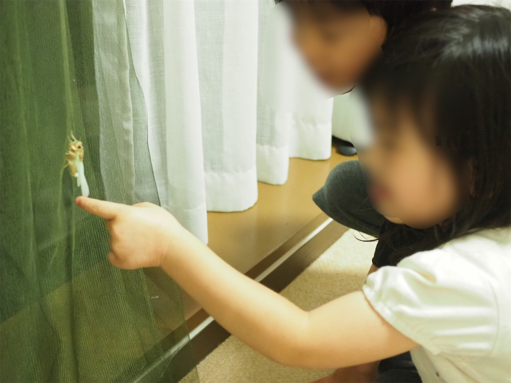 f:id:yukkocamp:20210606145927j:image