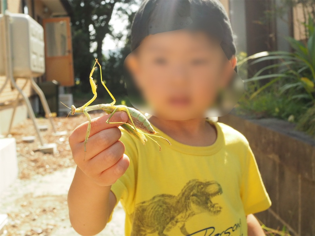 f:id:yukkocamp:20210707194800j:image