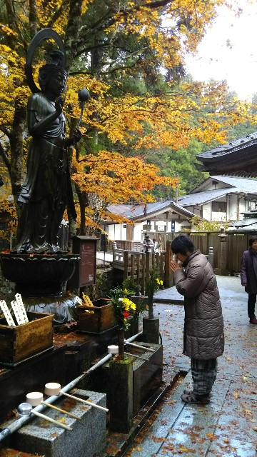 f:id:yukkurimushi:20171116075549j:image