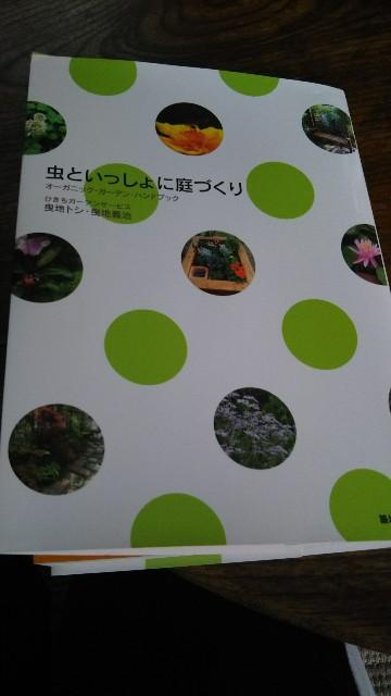 f:id:yukkurimushi:20180703085053j:image