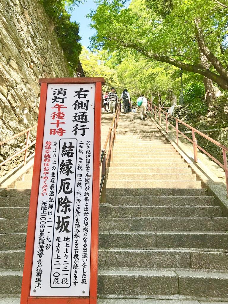f:id:yuko-k-ami:20190502230802j:image