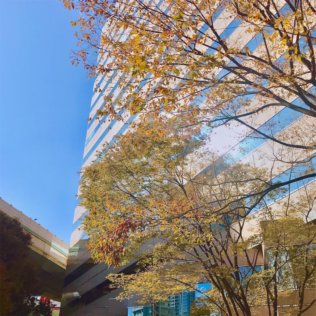 f:id:yuko-k-ami:20191110215559j:image