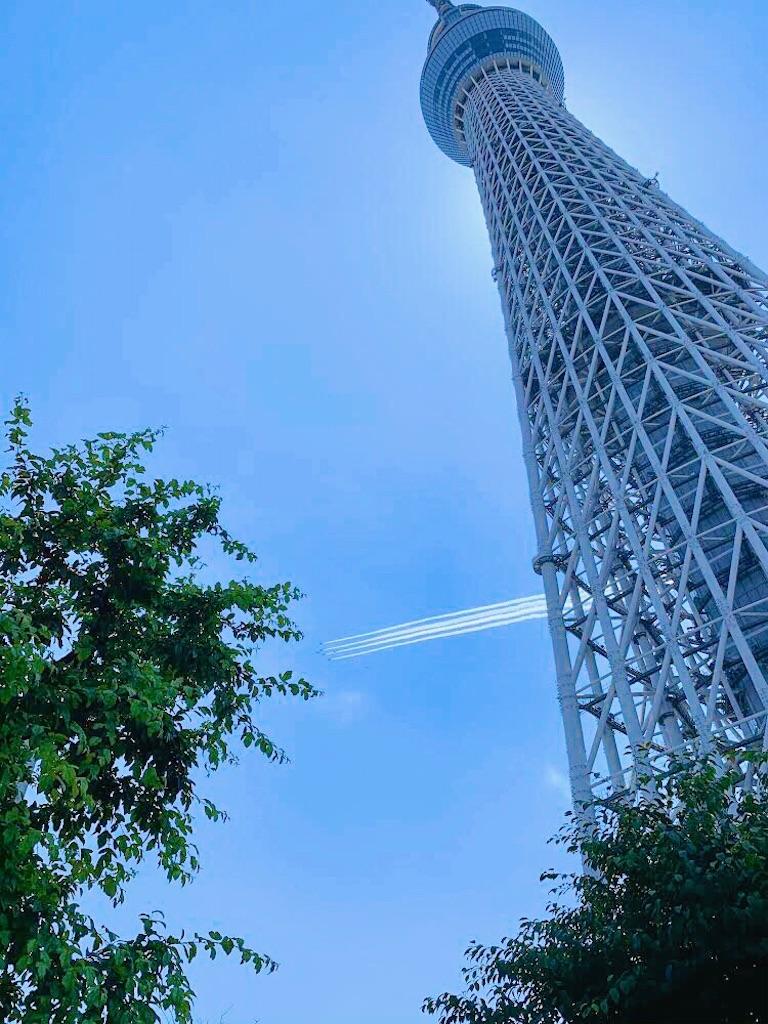 f:id:yuko-k-ami:20200529194848j:image