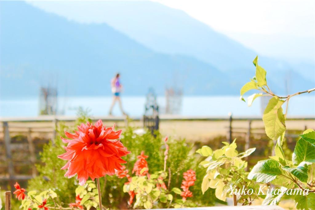 f:id:yuko-k-ami:20200714235349j:image