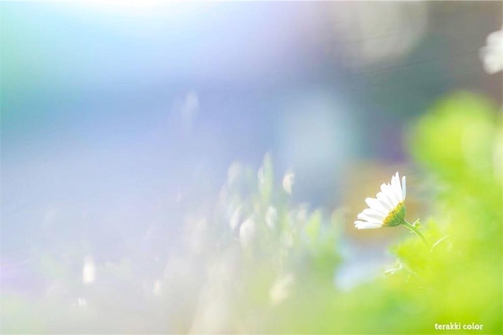 f:id:yuko-k-ami:20210117203627j:plain
