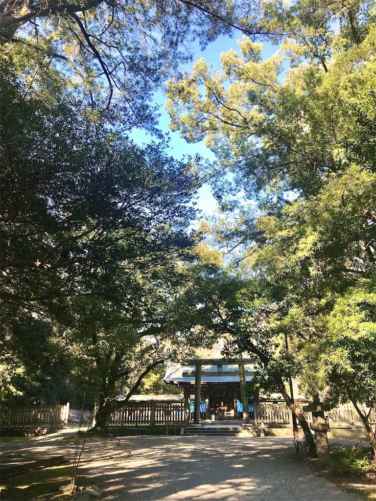 f:id:yuko-k-ami:20210121235032j:image