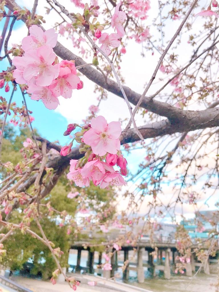 f:id:yuko-k-ami:20210216224644j:image