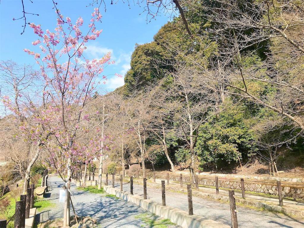 f:id:yuko-k-ami:20210308204206j:image