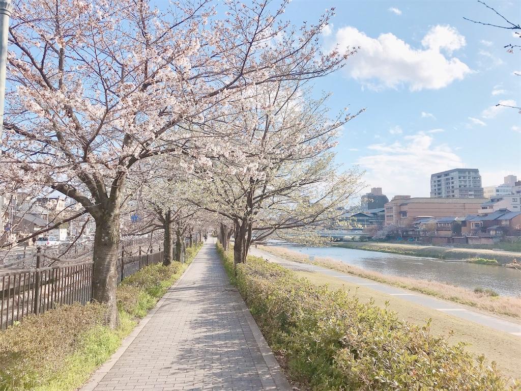 f:id:yuko-k-ami:20210323000203j:image