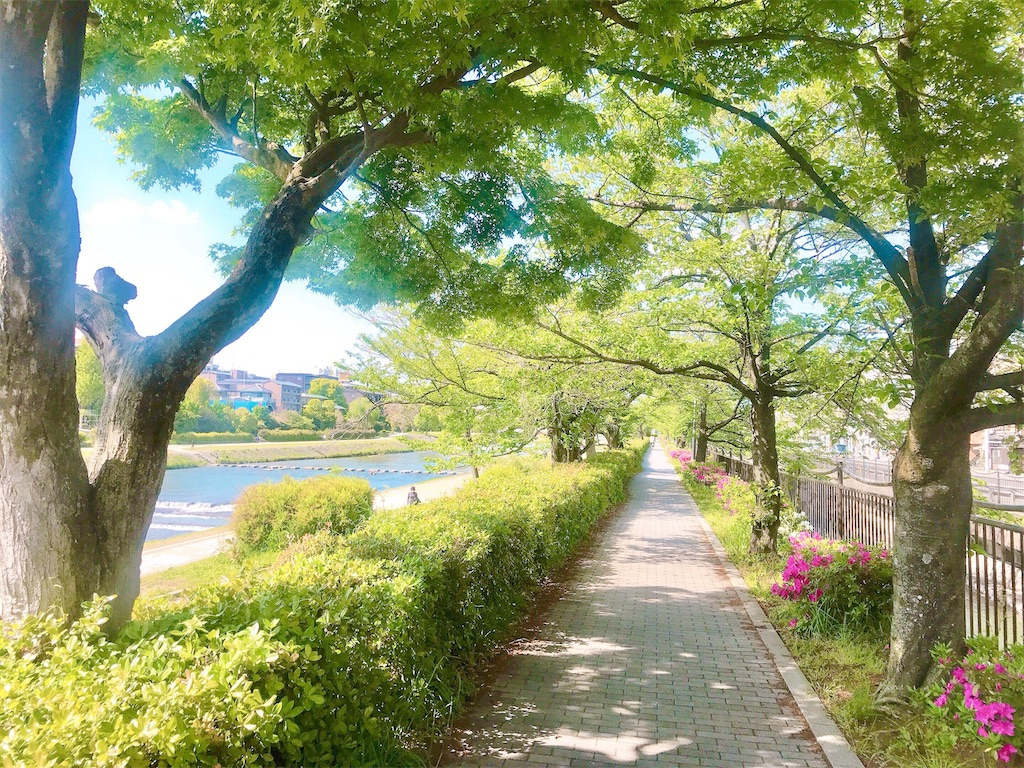 f:id:yuko-k-ami:20210420001142j:image