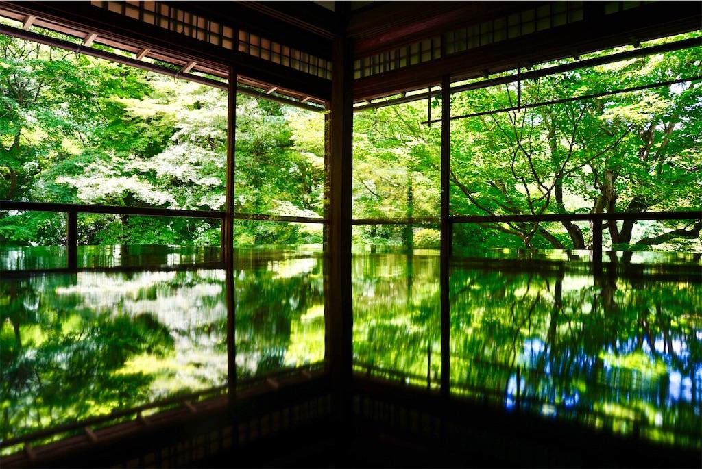 f:id:yuko-k-ami:20210616152222j:image