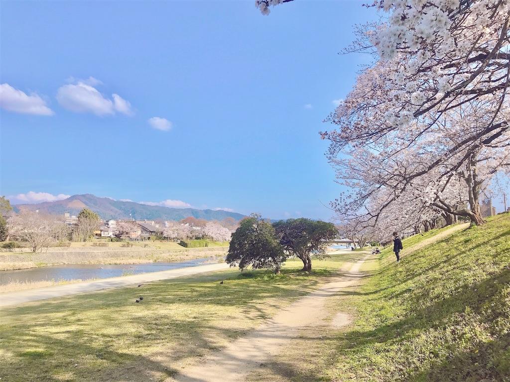 京都暮らし 人生で一度