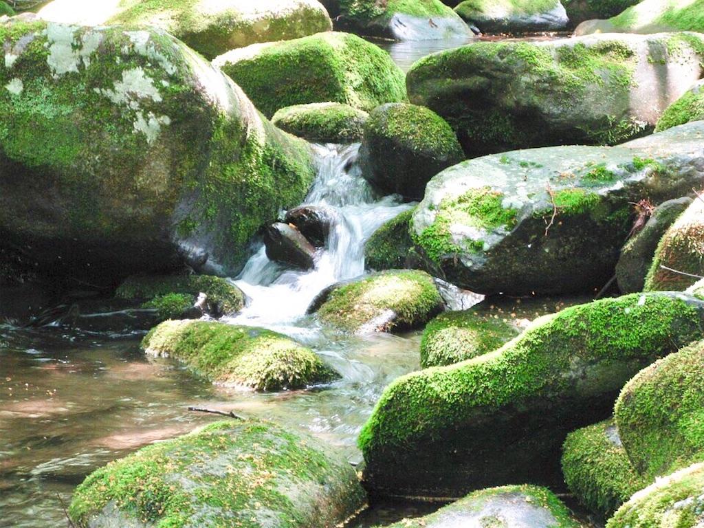 瞑想 効果 波動 上げる