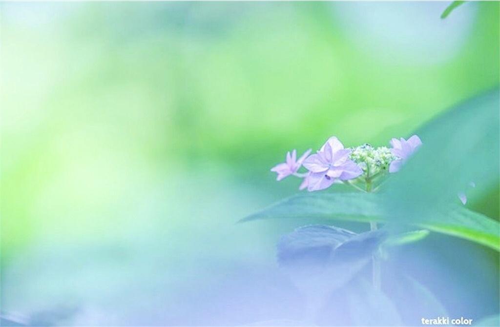 瞑想 潜在意識 波動 上げる 効果