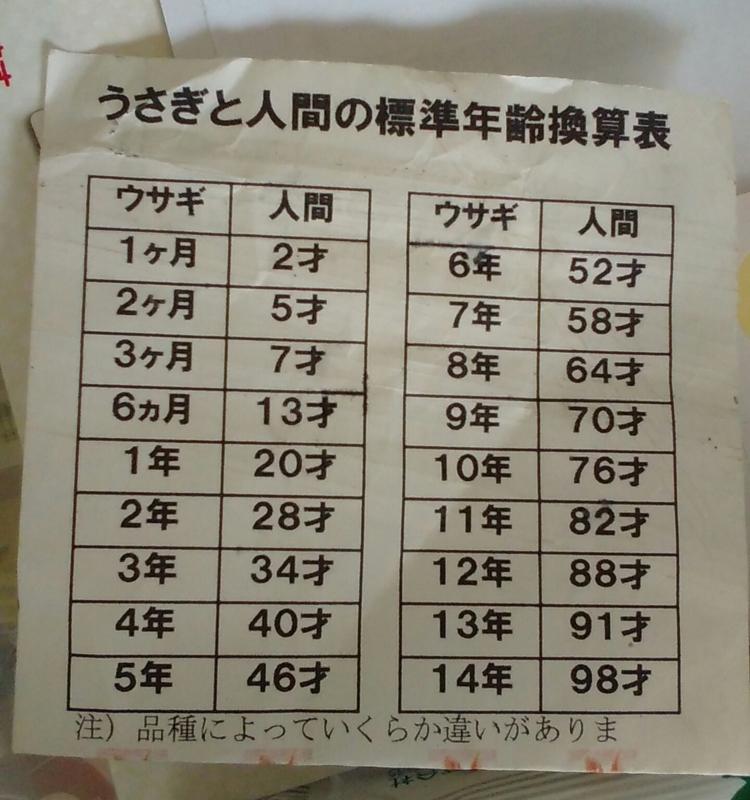 f:id:yuko76a:20160908100811j:plain