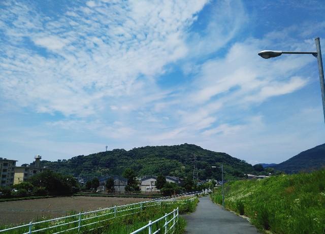 f:id:yuko76a:20180605142603j:image