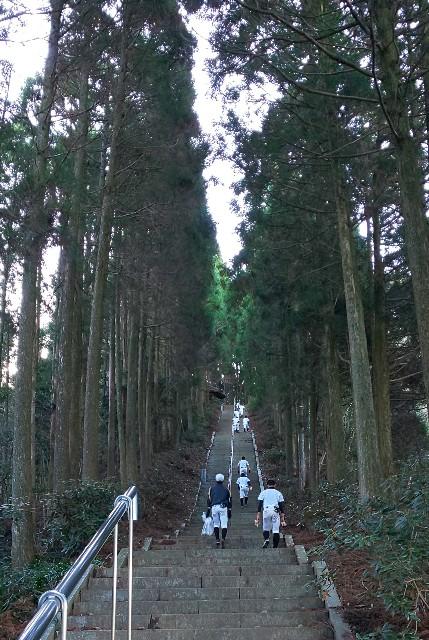 f:id:yuko76a:20181229210604j:image