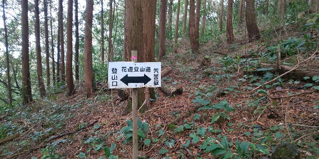 f:id:yuko76a:20190115120341j:image