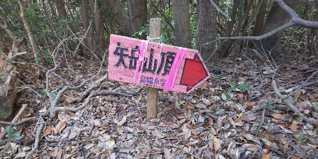 f:id:yuko76a:20190120121740j:image