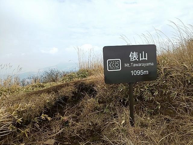 f:id:yuko76a:20190131120537j:image