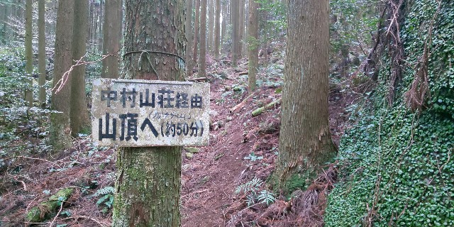 f:id:yuko76a:20190220160926j:image